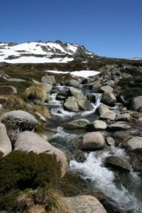Snowy River Headwaters