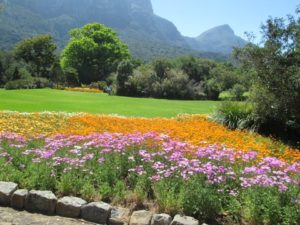 Kirstenbosch GardensPages to Places
